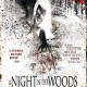 A Night in the Woods (2011) - Found Footage Films Movie Poster (Found footage Horror)
