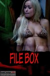 File Box (2013) - Found Footage Films Movie Poster (Found Footage Horror)