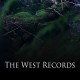 The West Records (2013) - Found Footage Films Movie Poster (Found Footage Horror)