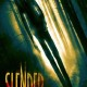 Slender (2016) - Found Footage Films Movie Poster (Found Footage Horror)(