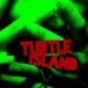 Turtle Island (2013) - Found Footage Films Movie Poster (Found Footage Horror)