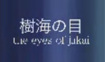 The Eyes of Jukai (2012) - Found Footage Films Movie Poster (Found Footage Horror)