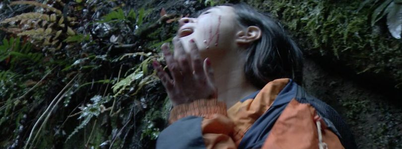 The Screaming Silent (2020) - Found Footage Films Movie Fanart (Found Footage Horror)