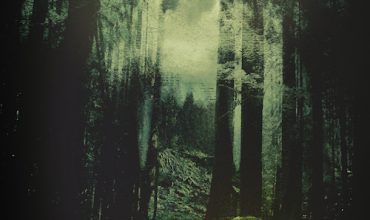 The Woods (2013) - Found Footage Films Movie Poster (Found Footage Thriller Movies)