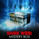 Dark Web: Mystery Box (2020) - Found Footage Films Movie Poster (Found Footage Horror)