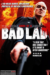 Diary of a Bad Lad (2010) - Found Footage Films Movie Poster (Found Footage Drama)