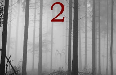 Mystery of Slender Man 2 (2014) - Found Footage Films Movie Poster (Found Footage Horror Movies)