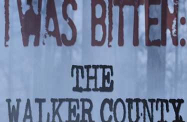 I Was Bitten: The Walker County Incident (2014) - Found Footage Films Movie Poster (Found Footage Horror Movies)